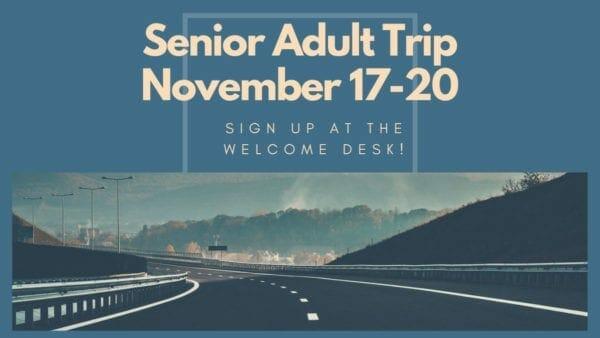 senior adult trip